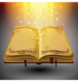 Open magic book with the light and sparkles vector image