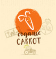 local farm carrot hand drawn organic vegetable vector image