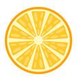 orange flat icon fruit and vitamin vector image
