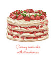 delicious creamy cake with strawberries vector image vector image