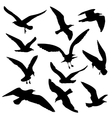 Flying birds black silhouettes set vector image vector image