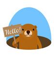 groundhog hello board icon flat style vector image