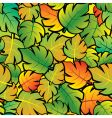 leaf abstract background vector image vector image