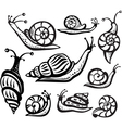 Set of black and white snails vector image