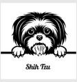 shih tzu - peeking dogs - - breed face head vector image