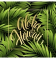 Summer tropical background of palm leaves vector image