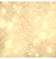 Glittery Gold Background vector image