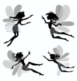 Seth cartoon fairies vector image