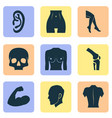 body icons set with breast belly leg and other vector image