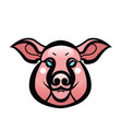 color image of swine or pig head vector image vector image