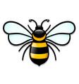 isolated honeybee cartoon design vector image vector image