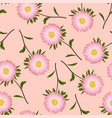 pink aster daisy on pink background vector image vector image