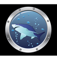 porthole and a shark vector image vector image