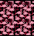 seamless background of the pink flamingos vector image vector image
