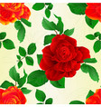 seamless texture stem flower red and orange roses vector image vector image