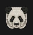 head of panda bear face of wild animal hand drawn vector image