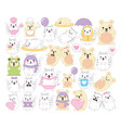 bundle cats and mouses kawaii characters vector image