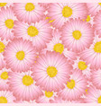 pink aster daisy flower seamless background vector image vector image