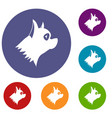 pinscher dog icons set vector image vector image