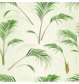 seamless texture palm decoration house plant vector image