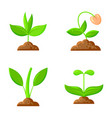 sprout flat icons plant orgainc sapling set vector image