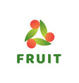 creative abstract fruit logo vector image