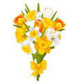 daffodils and tulips vector image vector image