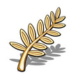 golden olive branch isolated on white background vector image vector image