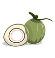 isolate green coconut and half slice vector image vector image