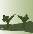 Men are engaged karate vector image vector image