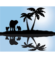 palm and elephants reflection vector image vector image