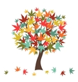 Stylized autumn tree with falling leaves for vector image vector image