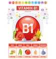 thiamine vitamin b1 food icons healthy eating vector image vector image