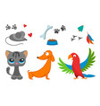 cat and mouse cute kitty pet dog parrot cartoon vector image