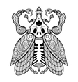 Coloring page of Bug with skull zentangle vector image