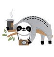 cute sloth bear animal with a camera vector image