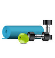 fitness equipment apple dumbbells and fitness vector image vector image