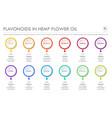 flavonoids in hemp flower oil horizontal business vector image vector image