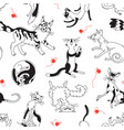 seamless pattern with playing cats different vector image