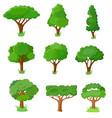 set of decorative stylized tree vector image vector image