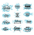 fishing adventure fish catch club lettering vector image vector image