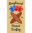 Hawaii surfers t-shirt graphic vector image