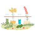 homeopathy and natural herbal treatment vector image