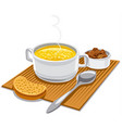 hot chicken broth vector image vector image