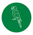 rosella parrot icon in thin line style vector image vector image