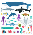 sea life and underwater animals and fishes vector image vector image