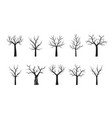 set black trees outline vector image vector image