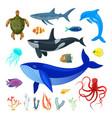 set ocean animals vector image vector image