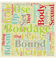 Bondage Bandage text background wordcloud concept vector image vector image