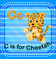 flashcard letter c is for cheetah vector image vector image